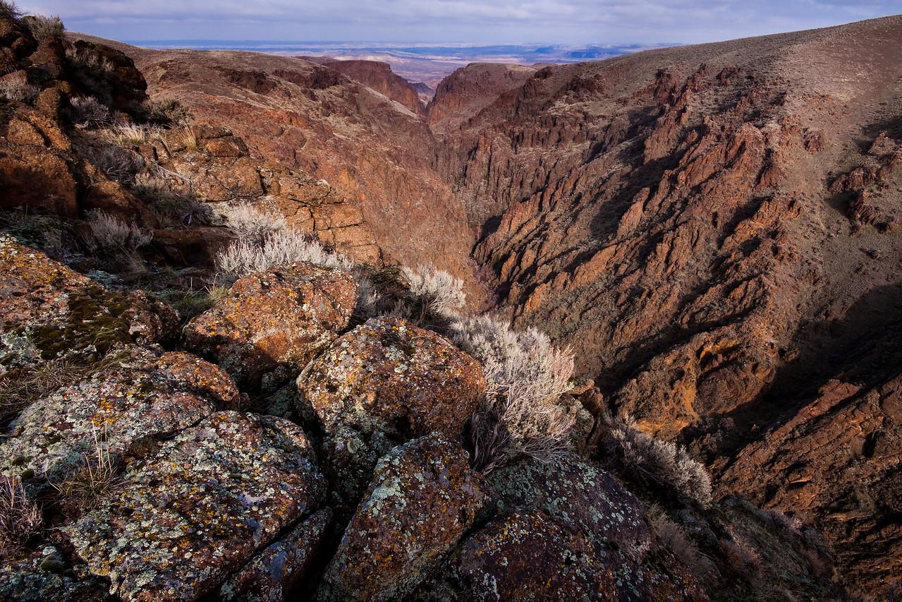 Squaw Creek Canyon on a Winter afternoon. Owyhee Desert, Idaho