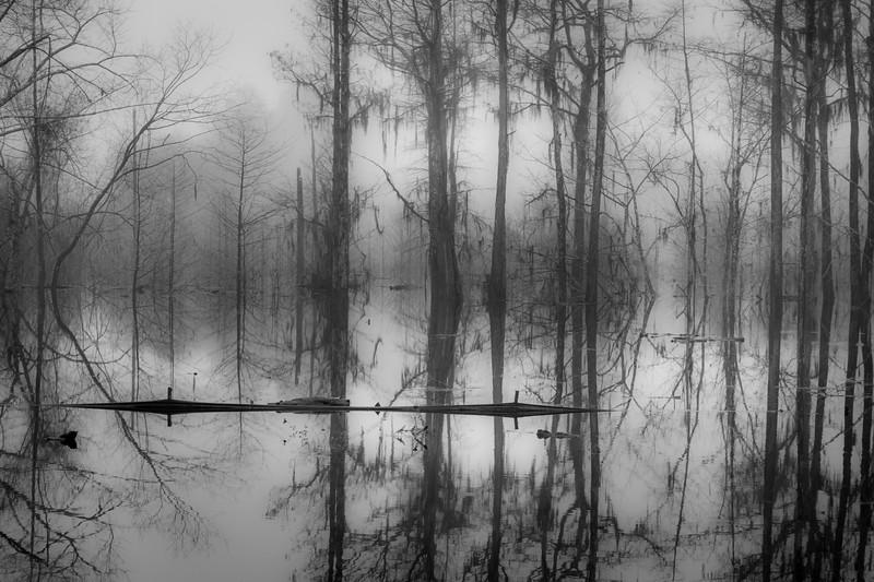 Wewahitchka Dead Lake