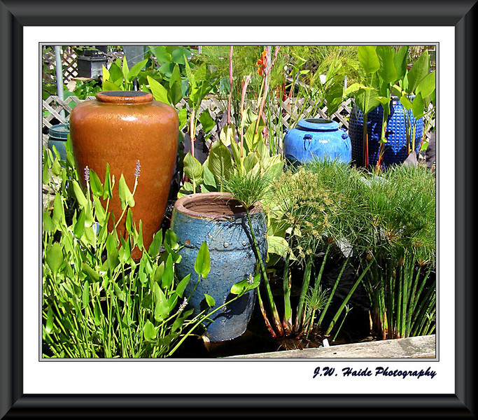 Colorful Pots - Hughes Water Garden, Tualatin, Oregon
