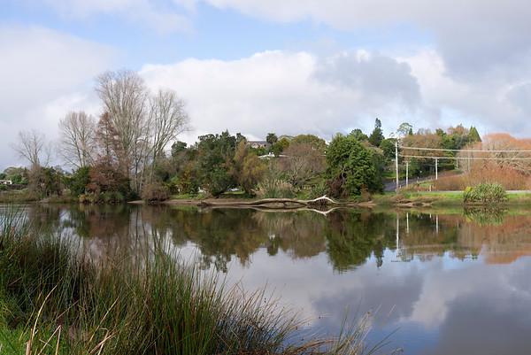 Tauranga Landscapes