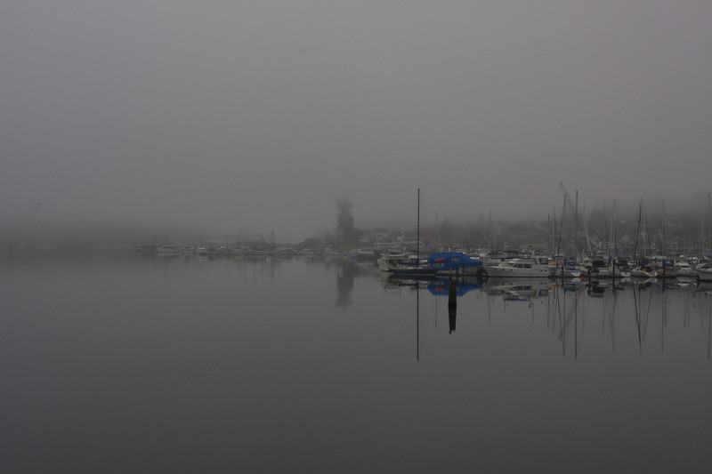 Early morning on a very foggy winter day.