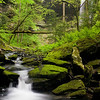 Deer Lick Falls near Monteagle, TN