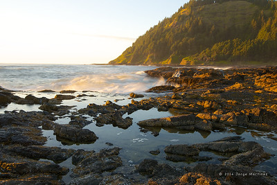 Cape Perpetua - Canon Beach 2014 33