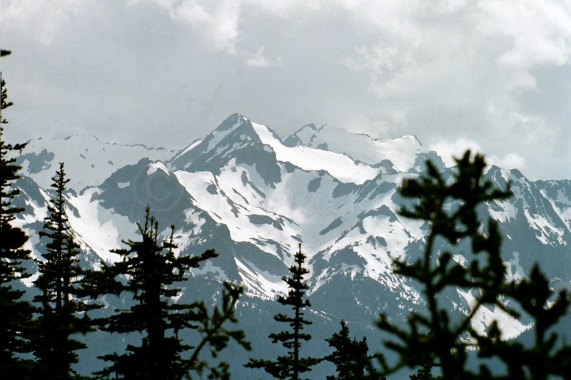 Mount Olympus, from Hurricane Ridge, Olympic National Park, State of Washington.