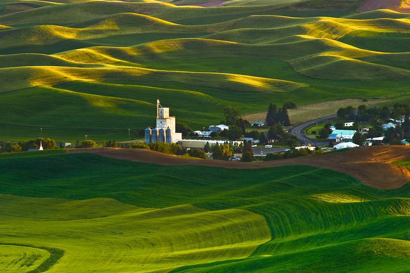 Colfax, Washington ~ The Palouse area