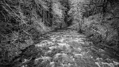 Sol Duc River, Olympic Peninsula, Washington