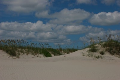 Dunes of the North end of Ocracoke, Island, N.C.