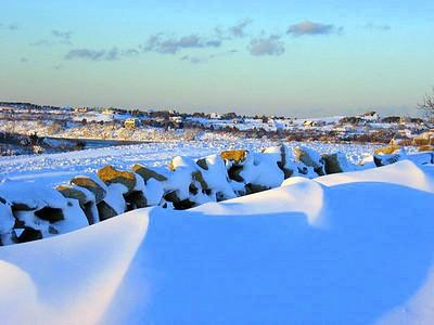 Snow Vista
