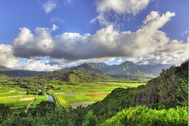 Hanalei Valley - Island of Kauai, Hawaii