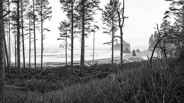 Ruby Beach, Pacific Coast Highway 101, Washington