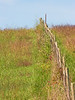 Fall 2006 - Hwy 00 Fenceline