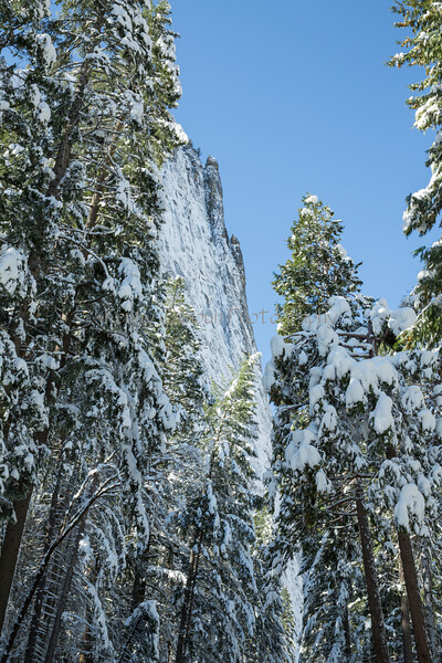 Yosemite Fire Falls-0107