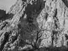 Kofa Mountains_N5A0308-Edit