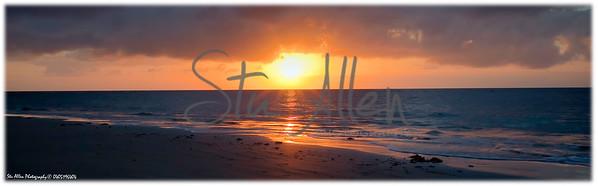 diantree sunrise