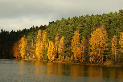 Ruska - Autumn Colors