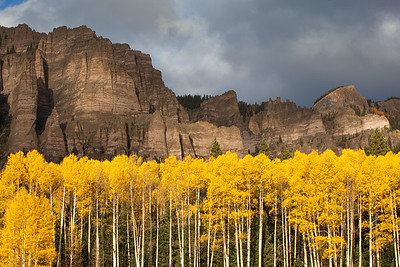 Aspens And Cliffs In Colorado