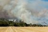 Guinda-County Fire 2018-8636