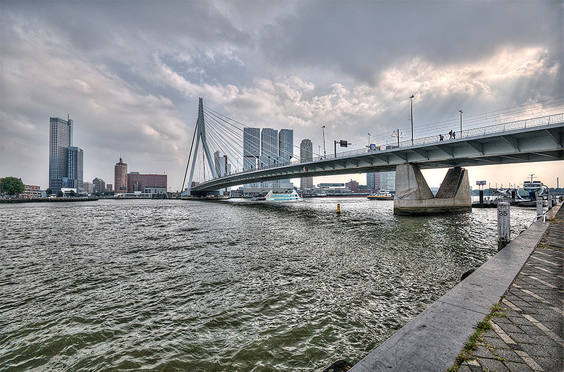 Swan Neck Bridge  Rotterdam