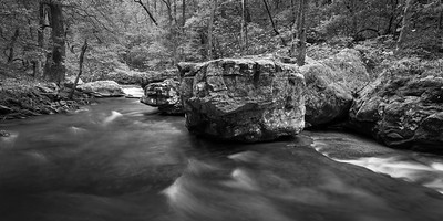 Fiery Gizzard Creek - Black and White - panorama