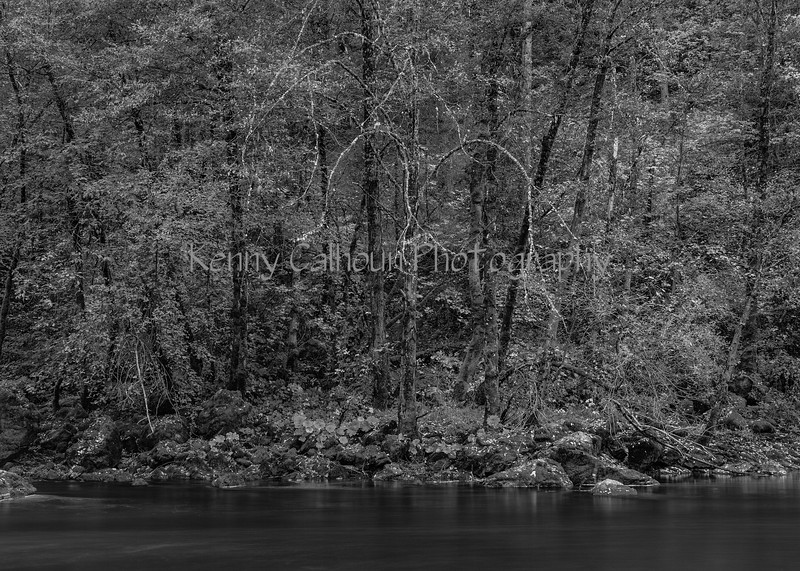 Trinity_River_Riverscapes_November_01,_20121N5A5184untitled-2
