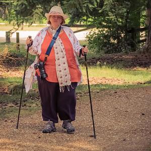 Tam walking New Forset