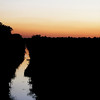 A bird files along a creek on County Road 850 West as the sun sets.