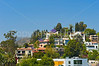 Hollywood Rooftop View