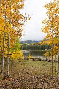 Colorado Pond In The Fall