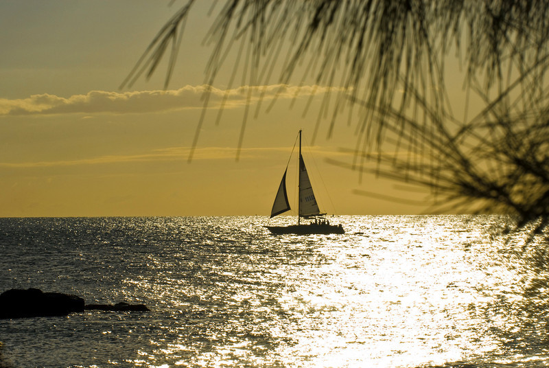 A lazy winter evening at Key West, Florida.