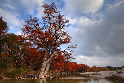 Fall color on the Frio River