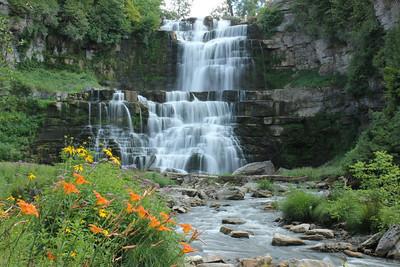 Chittenango Falls Spring