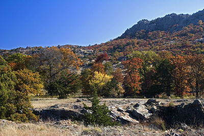 Wichita Mountains NWR