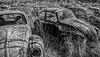 3-29-21 VW Graveyard-