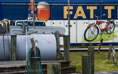 Fat Tires in Florida