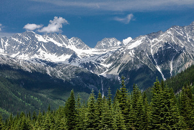 Rogers Pass, Yoho National Park.  July, 2012