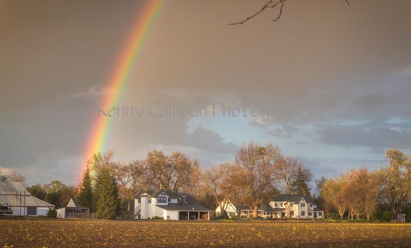 Kims House Rainbow_N5A2532-Edit-Edit