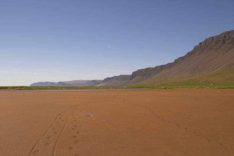 Rauðasandur, SW Iceland