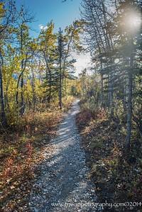 Savage Alpine Trail Denali National Park Alaska © 2014
