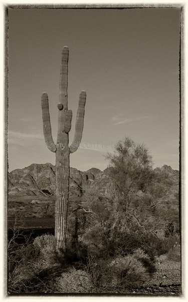 Kofa_Mountain_Sunset_December_12,_20121N5A8863_PS_untitled