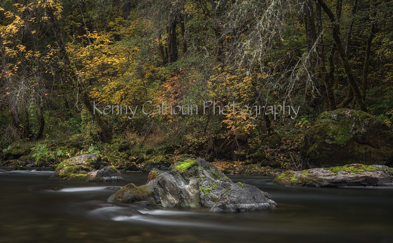 Trinity_River_Riverscapes_November_01,_20121N5A5175untitled-2