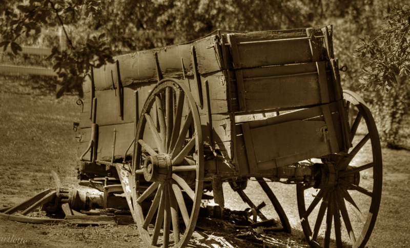 Broken Wagon, Jamul
