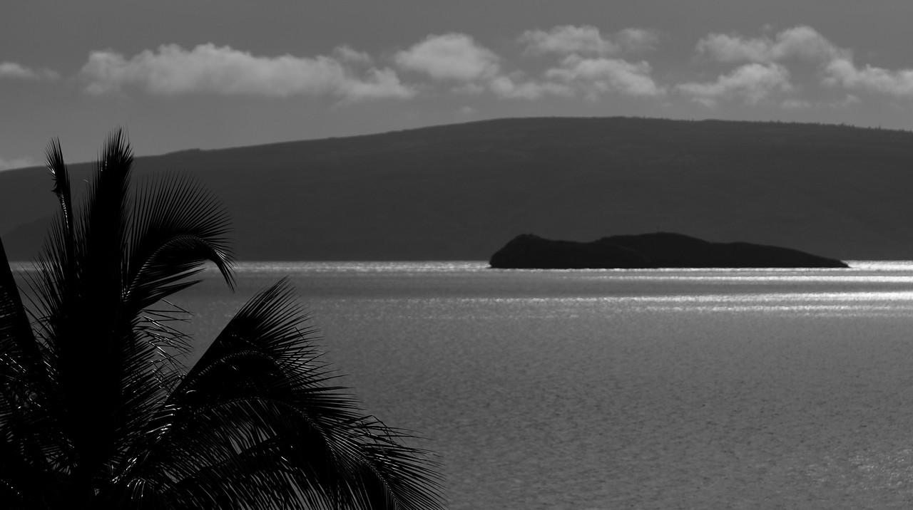 Maui_122908_0075