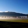 Mist Mountain