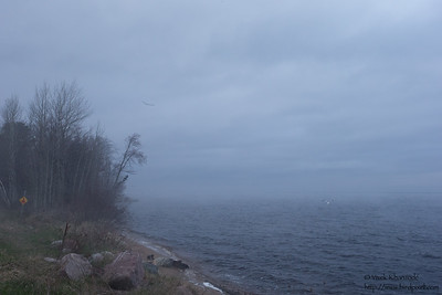 A gray day on Lake Superior - Upper Peninsula, MI, USA