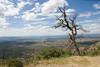 2007 Colorado Trip - Mesa Verda Scene