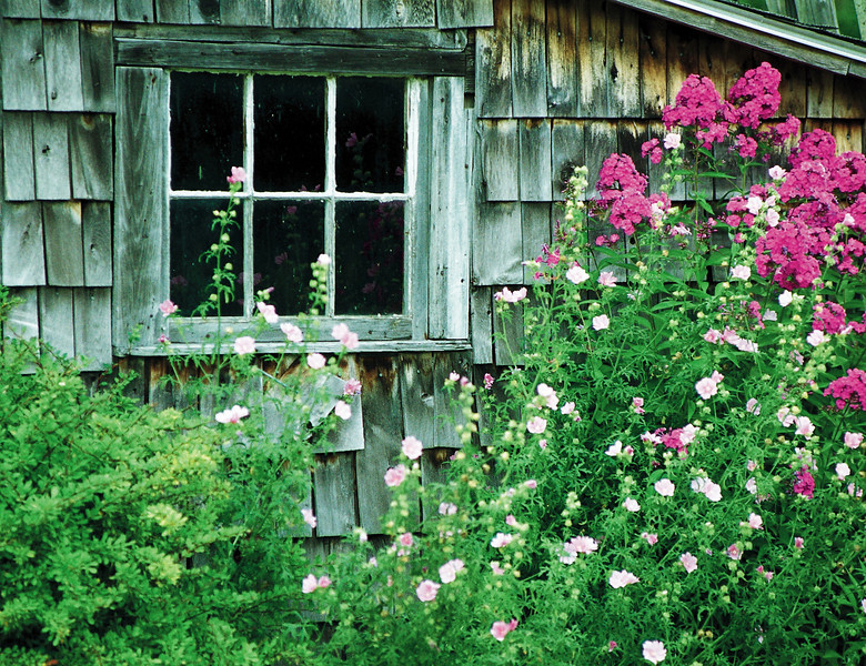 Garden Shed and flowers, Hampden, Maine