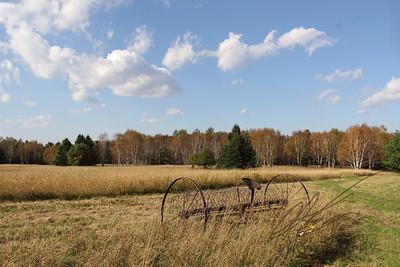 antigue hayrake in field