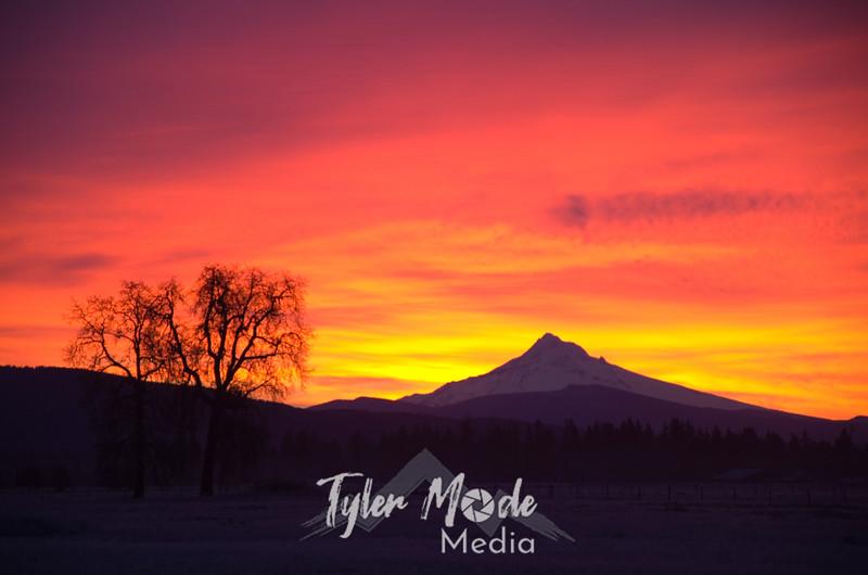 17  G Mt  Hood Sunrise