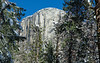 Yosemite Fire Falls-0092