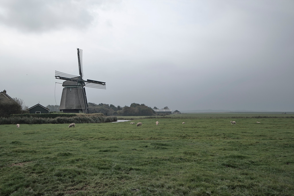 Dutch Lanscape